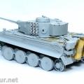 Tiger1DSCF4075res