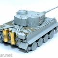 Tiger1DSCF4077res